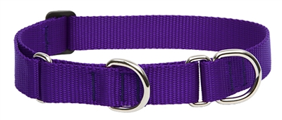 "Lupine 1"" Purple 19-27"" Martingale Training Collar"