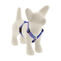 "Lupine 1/2"" Ripple Creek 12-20"" Roman Harness"