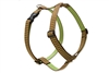"Retired Lupine 1"" Copper Canyon 24-38"" Roman Harness"