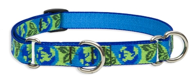 "Retired LupinePet Earth Day 10-14"" Martingale Training Collar - Medium Dog"
