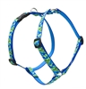 "Retired Lupine 3/4"" Earth Day 20-32"" Roman Harness"