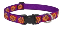 "Retired Lupine Flower Box 12-20"" Adjustable Collar - Large Dog"