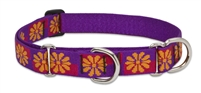 "Retired Lupine Flower Box 19-27"" Martingale Training Collar - Large Dog"