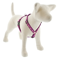 "Lupine 3/4"" Rose Garden 14-24"" Roman Harness"