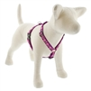 "Lupine 3/4"" Rose Garden 20-32"" Roman Harness"