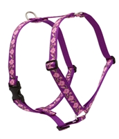 "Lupine 1"" Rose Garden 36-44"" Roman Harness"