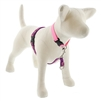 "Lupine 3/4"" Rose Garden 16-26"" No-Pull Harness"