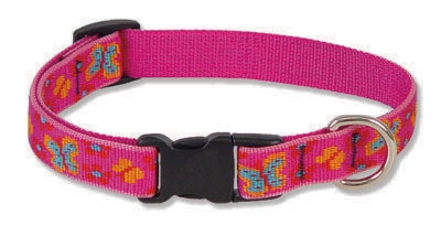 "Grr-ly Dog 15-25"" Adjustable Collar-Medium Dog"