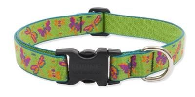 "Meadow 25-31"" Adjustable Collar"