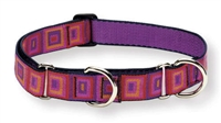 "Retired Lupine 1"" Ruby Cube 19-27"" Martingale Training Collar"