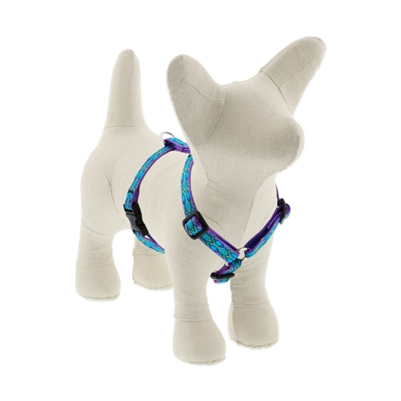 "Lupine 1/2"" Rain Song 12-20"" Roman Harness"