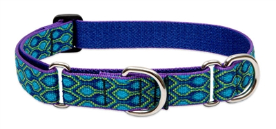 "Lupine 1"" Rain Song 15-22"" Martingale Training Collar"