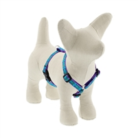 "Lupine 1/2"" Rain Song 9-14"" Roman Harness"