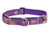 Lupine Sunny Days Combo/Martingale Training Collar