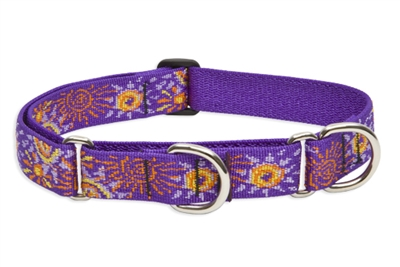 "Retired Lupine Sunny Days 15-22"" Combo/Martingale Training Collar - Large Dog"
