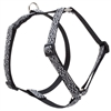 "Retired LupinePet Silverado 20-32"" Roman Harness - Medium Dog"