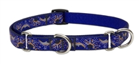 "Retired Lupine 3/4"" Starry Night 14-20"" Martingale Training Collar"