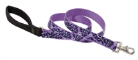 Lupine Surf Pup 6' Leash