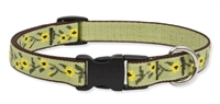 "Retired Lupine Suzie Q 9-14"" Adjustable Collar - Medium Dog"
