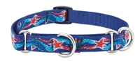 "Retired Lupine 3/4"" Super Star! 10-14"" Martingale Training Collar"