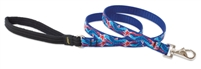 Retired Lupine Super Star! 4' Padded Handle Leash - Medium Dog