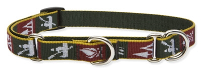 "Retired Lupine Trail Mix 10-14"" Combo/Martingale Training Collar - Medium Dog"