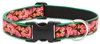 "Retired Lupine Tropicana 12-20"" Adjustable Collar - Large Dog"
