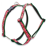 "Retired Lupine 1"" Tropicana 20-32"" Roman Harness"