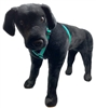 "Retired Lupine TLS Green (Trimline Solid) 20-32"" Roman Harness - Medium Dog"