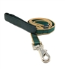 "Retired Lupine 3/4"" Trimline Solid Hunter 4' Padded Handle Leash"