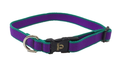"Retired Lupine TLS Purple (Trimline Solid) 12-20"" Adjustable Collar - Medium Dog"