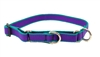 "Lupine TLS Purple (Trimline Solid) 14-20"" Combo/Martingale Training Collar - Medium Dog"