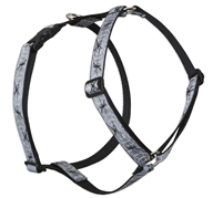 "Retired Lupine 1"" Web Master 24-38"" Roman Harness"