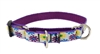 "LupinePet 3/4"" Sample Daisies on White 10-14"" Martingale Training Collar - Medium Dog MicroBatch"