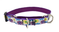 "Lupine 3/4"" Sample Daisies on White 10-14"" Martingale Training Collar - Medium Dog MicroBatch"