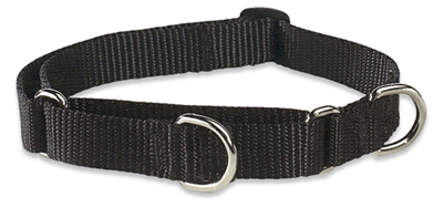 "Lupine 3/4"" Black 10-14"" Martingale Training Collar"
