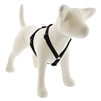 "Lupine Solid 3/4"" Black 20-32"" Roman Harness"