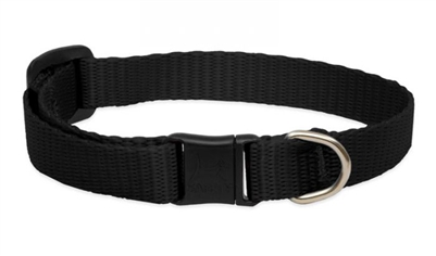 Lupine Solid Black Safety Cat Collar