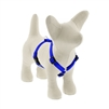 "Lupine Solid 1/2"" Blue 9-14"" Roman Harness"