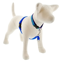 "Lupine 3/4"" Blue 16-26"" No-Pull Harness"