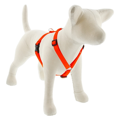 "Lupine 3/4"" Blaze Orange 12-20"" Roman Harness"