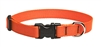 "Lupine Solid 3/4"" Blaze Orange 13-22"" Adjustable Collar"