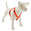 "Lupine Solid 3/4"" Blaze Orange 14-24"" Roman Harness"