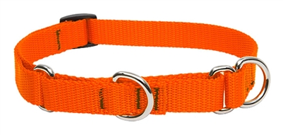 "Lupine Solid Blaze Orange 19-27"" Martingale Training Collar - Medium Dog"