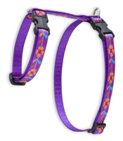 "Retired Lupine 1/2"" Spring Fling 9-14"" H-Style Cat Harness"