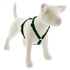 "Lupine Solid 3/4"" Green 20-32"" Roman Harness"