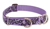 "Retired Lupine Surf Pup 19-27"" Combo/Martingale Training Collar - Large Dog"
