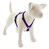 "Lupine 3/4"" Purple 14-24"" Roman Harness"