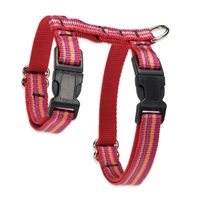 "Retired Lupine 1/2"" Sunset Stripe 9-14"" H-Style Cat Harness"