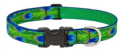 "Lupine  1"" Tail Feathers 16-28"" Adjustable Collar"